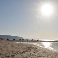Walking on Trafalgar Beach Image