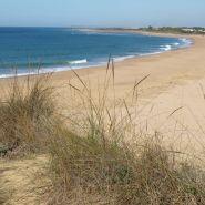 Cape Trafalgar Beach Image