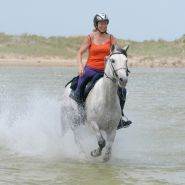 Bev on Horse Gallop through the lake Image